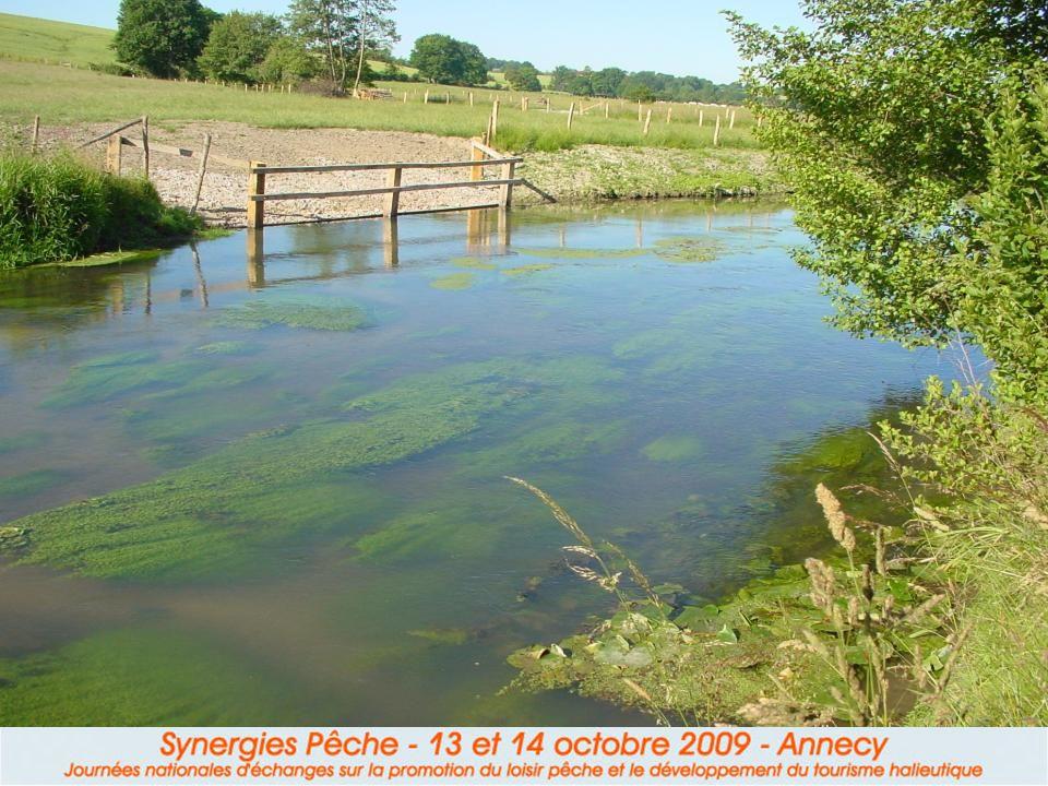 Le secteur de l'Huisne Cours d'eau naturel Maintenir en état