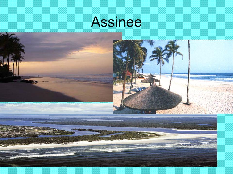 Assinee