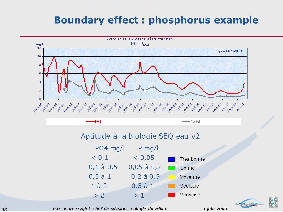 Boundary effect : phosphorus example