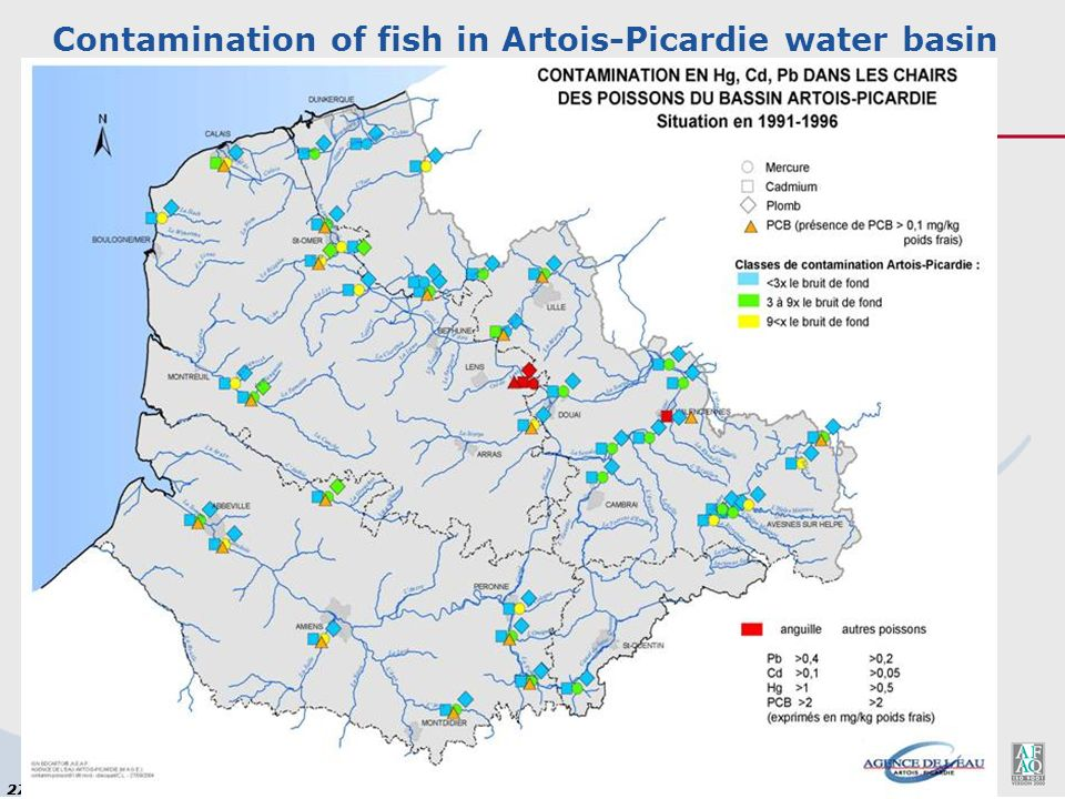 Contamination of fish in Artois-Picardie water basin