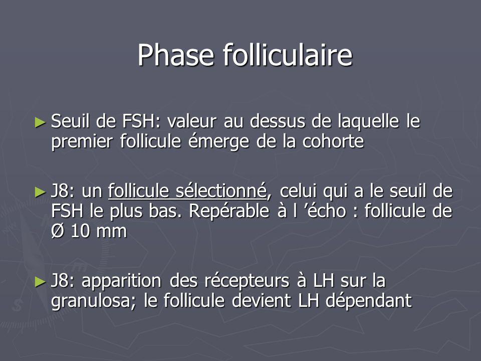 Phase folliculaire Seuil de FSH: valeur au dessus de laquelle le premier follicule émerge de la cohorte.
