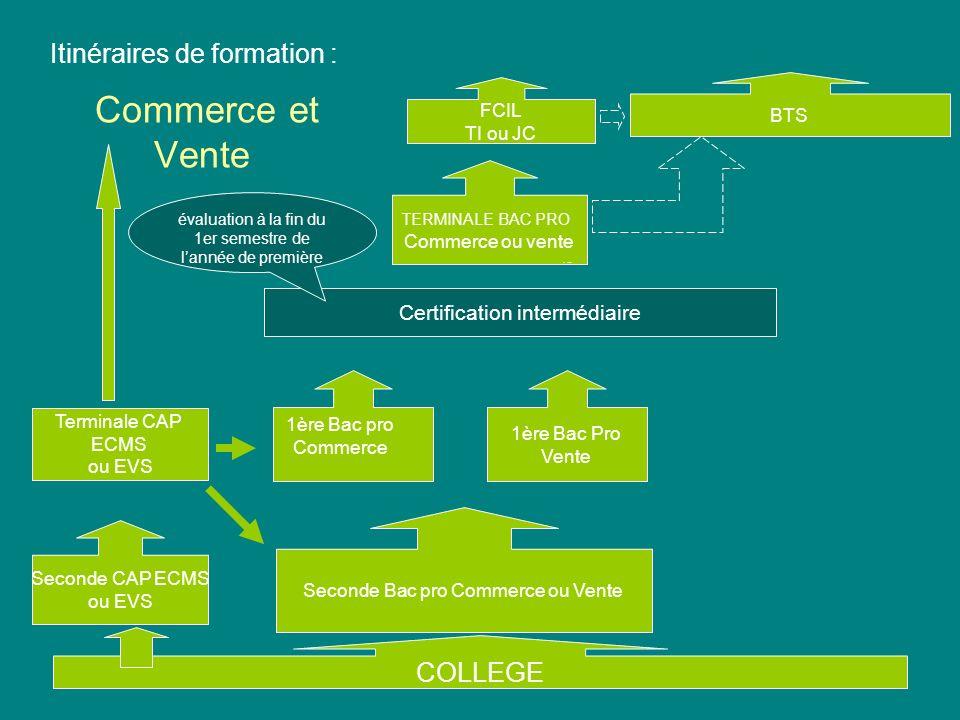 Commerce et Vente Itinéraires de formation : COLLEGE