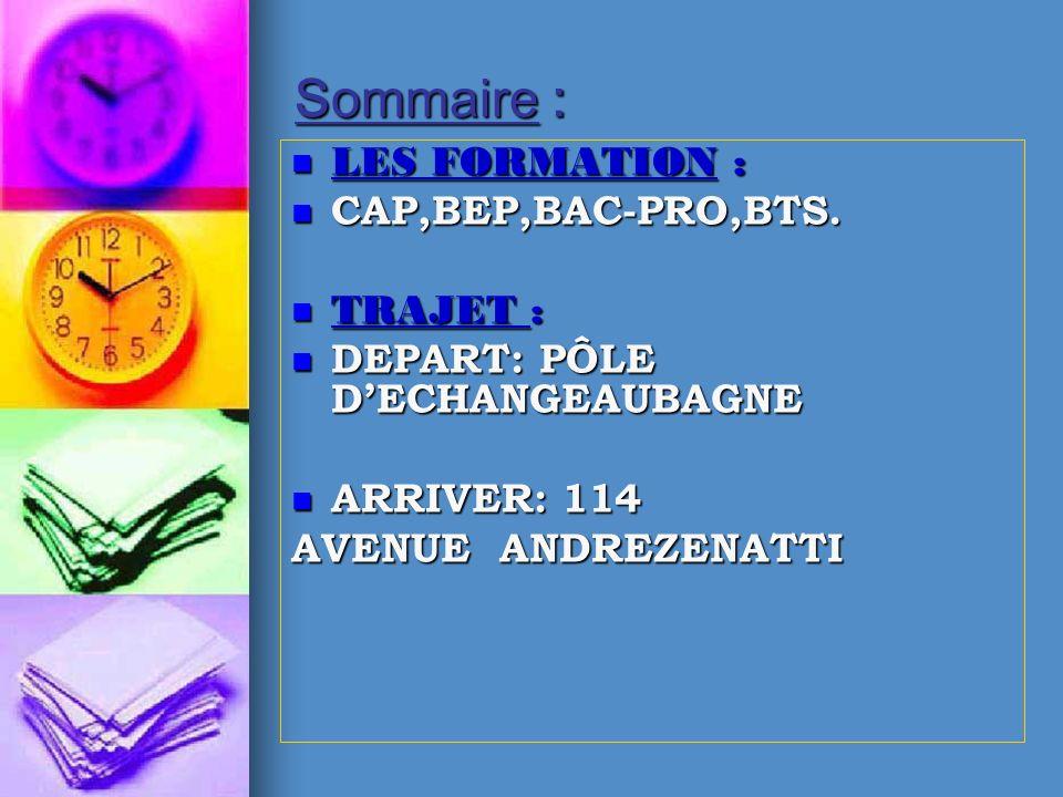 Sommaire : LES FORMATION : CAP,BEP,BAC-PRO,BTS. TRAJET :
