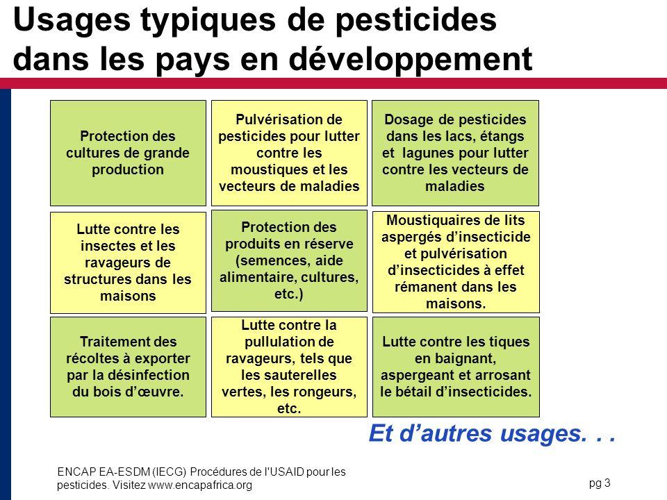Usages typiques de pesticides dans les pays en développement