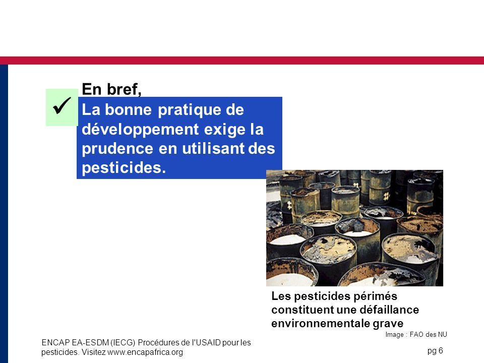 En bref,  La bonne pratique de développement exige la prudence en utilisant des pesticides.
