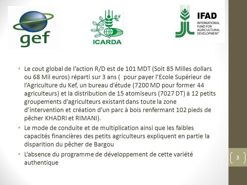 Le cout global de l'action R/D est de 101 MDT (Soit 85 Milles dollars ou 68 Mil euros) réparti sur 3 ans ( pour payer l'Ecole Supérieur de l'Agriculture du Kef, un bureau d'étude (7200 MD pour former 44 agriculteurs) et la distribution de 15 atomiseurs (7027 DT) à 12 petits groupements d'agriculteurs existant dans toute la zone d'intervention et création d'un parc à bois renfermant 102 pieds de pêcher KHADRI et RIMANI).