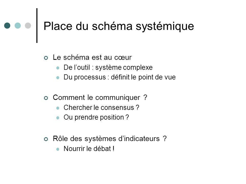 Place du schéma systémique