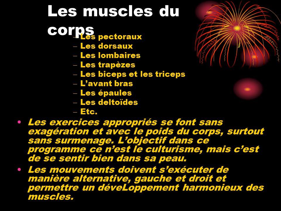 Les muscles du corps Les pectoraux. Les dorsaux. Les lombaires. Les trapèzes. Les biceps et les triceps.