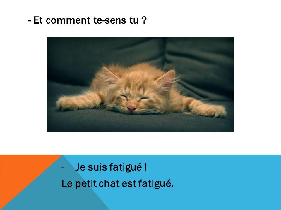 - Et comment te-sens tu Je suis fatigué ! Le petit chat est fatigué.