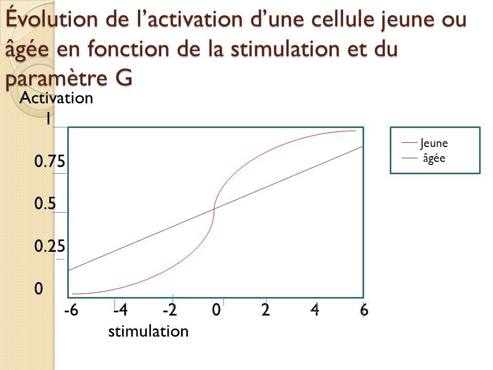 Évolution de l'activation d'une cellule jeune ou âgée en fonction de la stimulation et du paramètre G