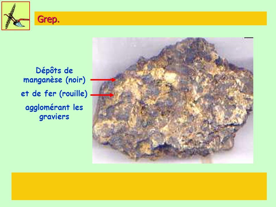Dépôts de manganèse (noir) agglomérant les graviers