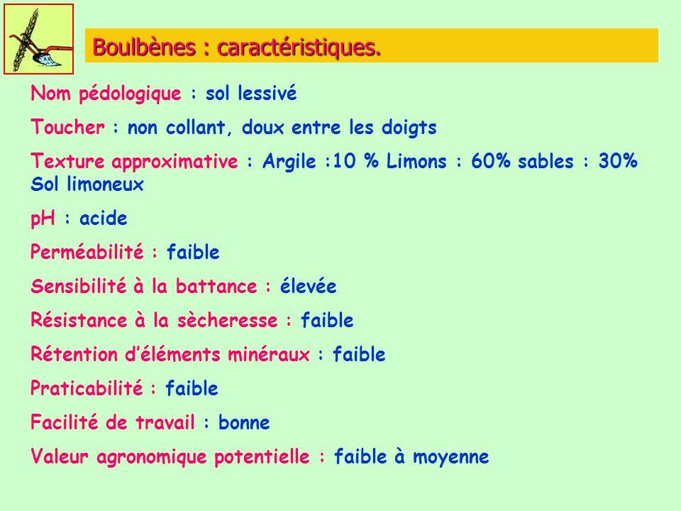 Boulbènes : caractéristiques.