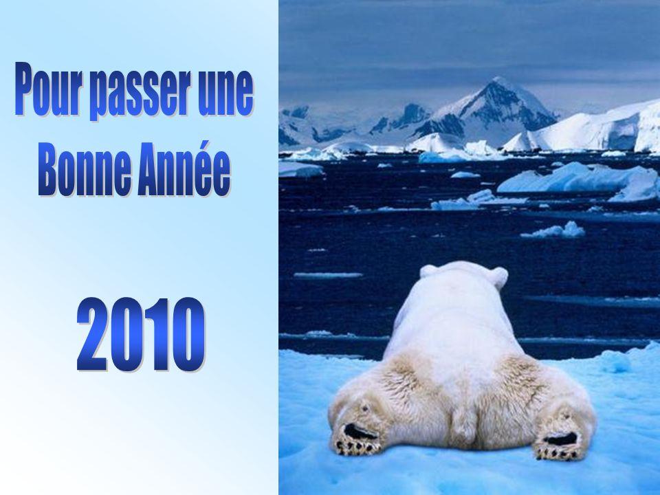 Pour passer une Bonne Année 2010