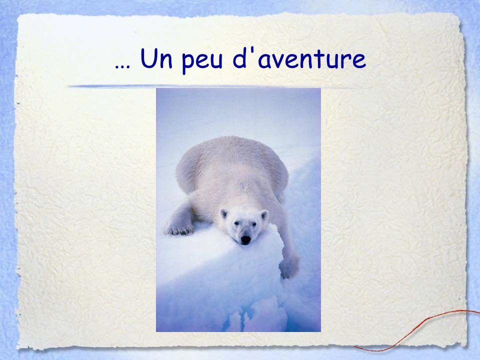 … Un peu d aventure