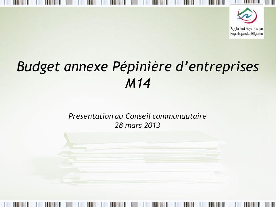 Budget annexe Pépinière d'entreprises M14