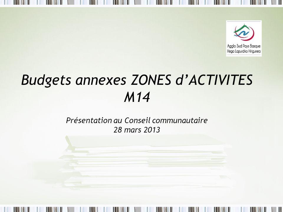 Budgets annexes ZONES d'ACTIVITES M14