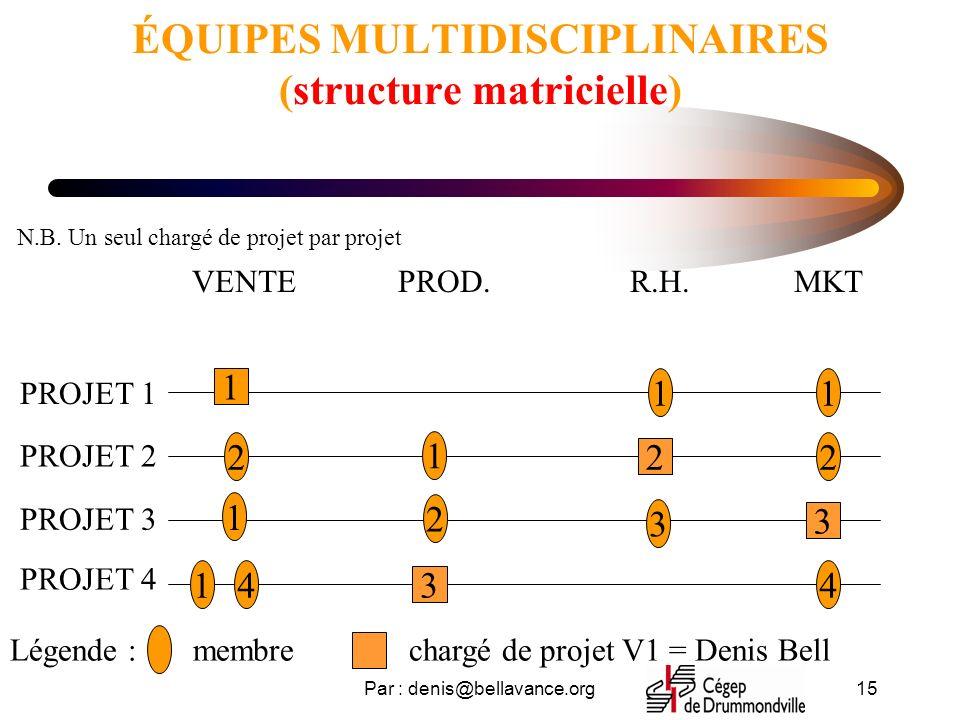ÉQUIPES MULTIDISCIPLINAIRES (structure matricielle)