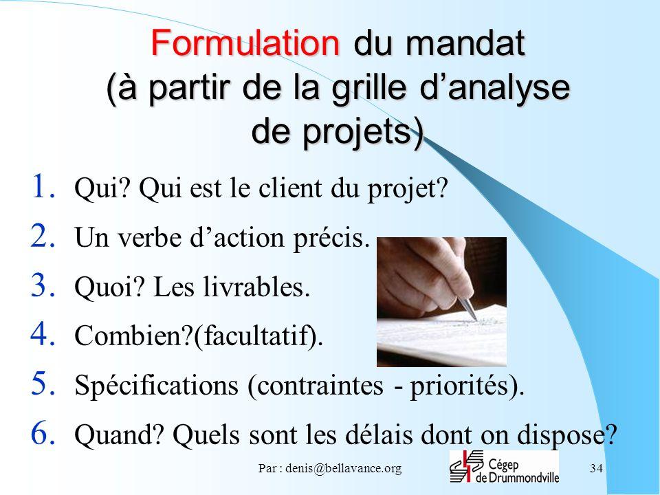 Formulation du mandat (à partir de la grille d'analyse de projets)