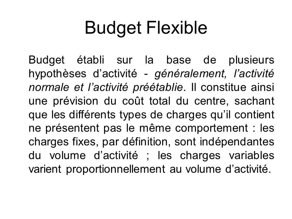 Budget Flexible