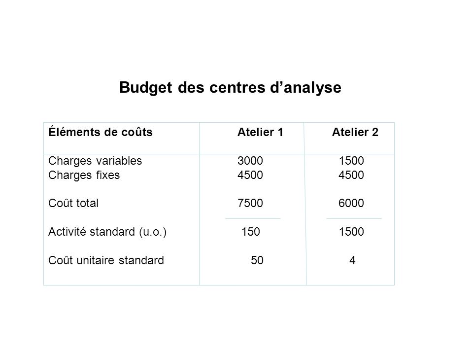 Budget des centres d'analyse