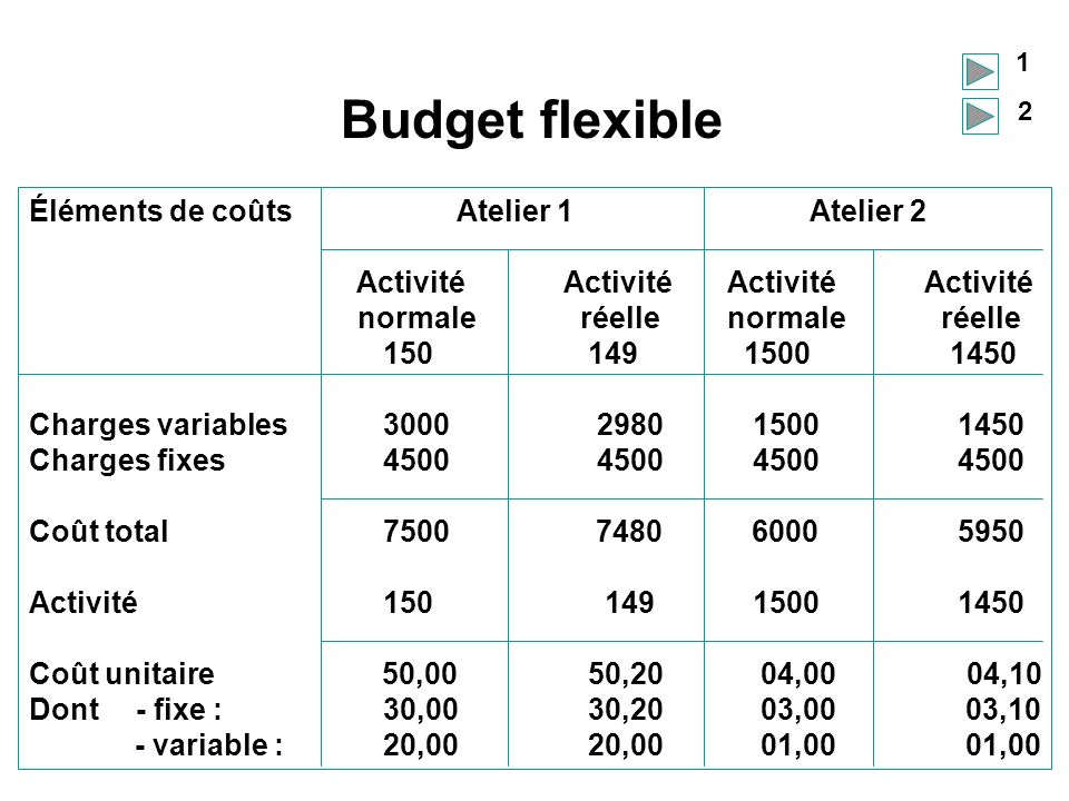 Budget flexible Éléments de coûts Atelier 1 Atelier 2