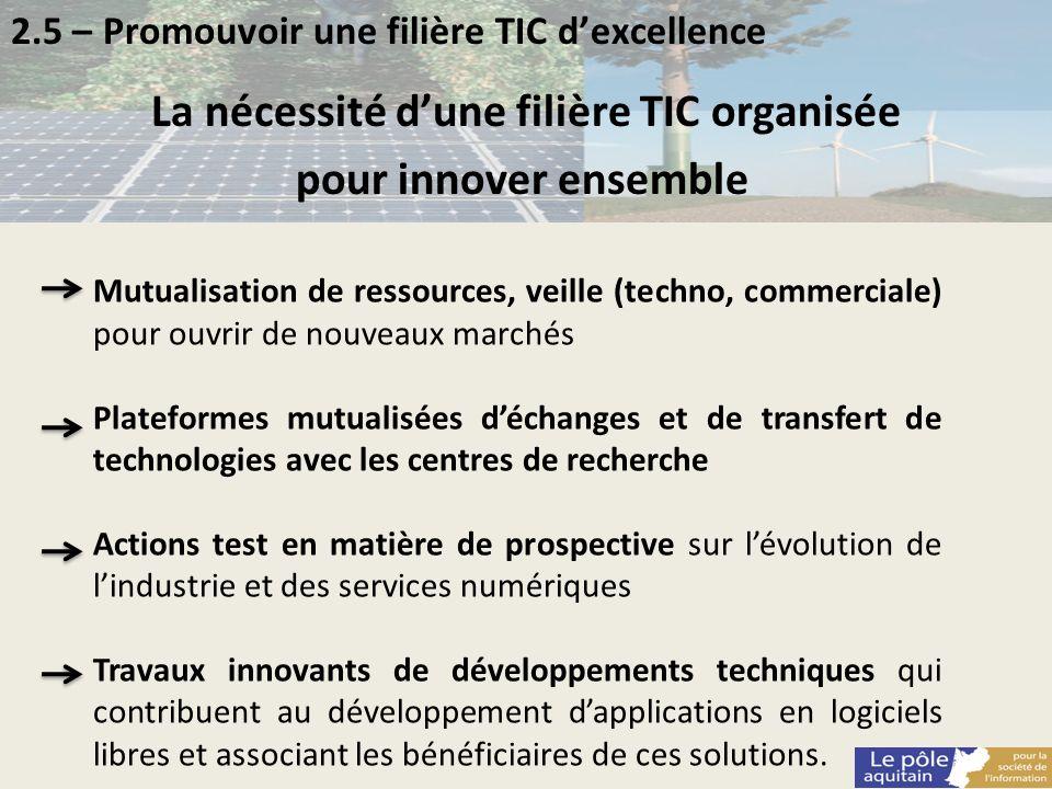 La nécessité d'une filière TIC organisée
