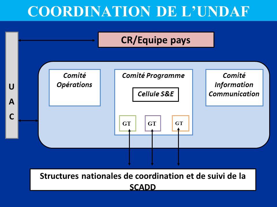 COORDINATION DE L'UNDAF