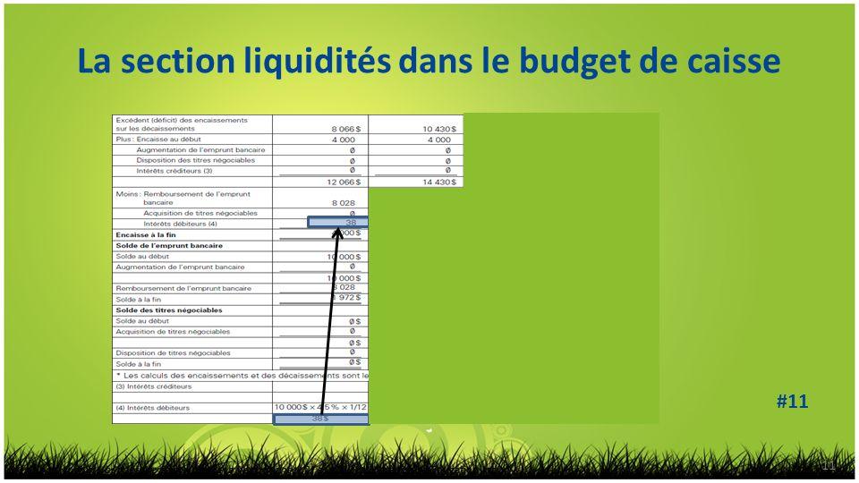 La section liquidités dans le budget de caisse