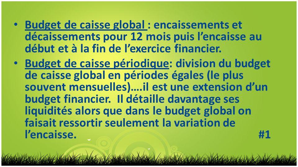 Budget de caisse global : encaissements et décaissements pour 12 mois puis l'encaisse au début et à la fin de l'exercice financier.