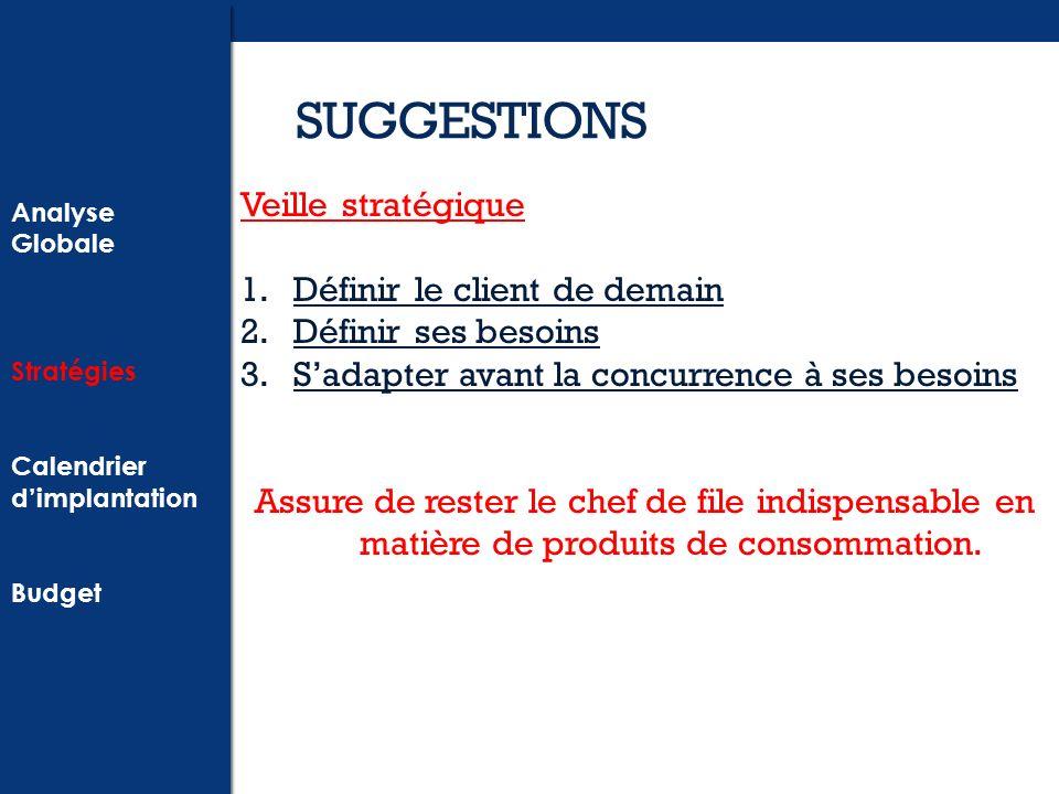 SUGGESTIONS Veille stratégique Définir le client de demain