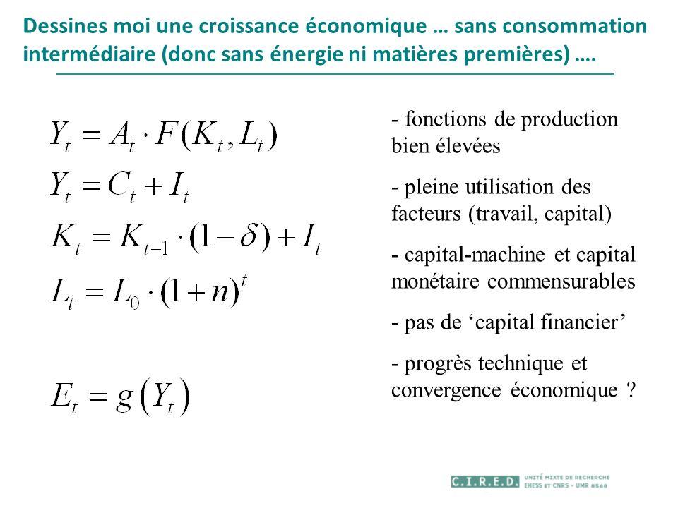 Dessines moi une croissance économique … sans consommation intermédiaire (donc sans énergie ni matières premières) ….