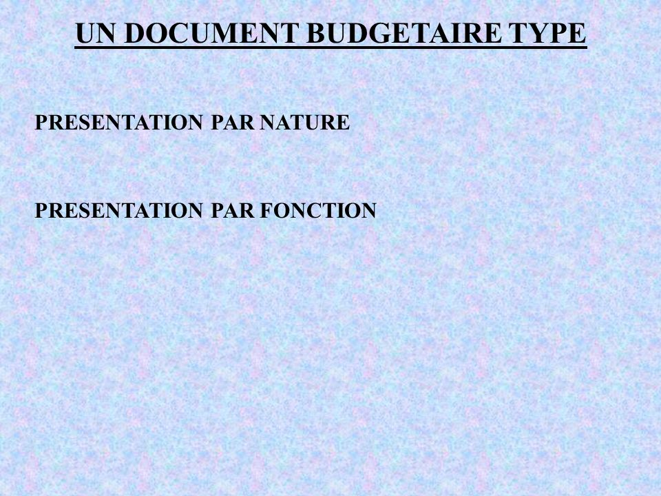 UN DOCUMENT BUDGETAIRE TYPE