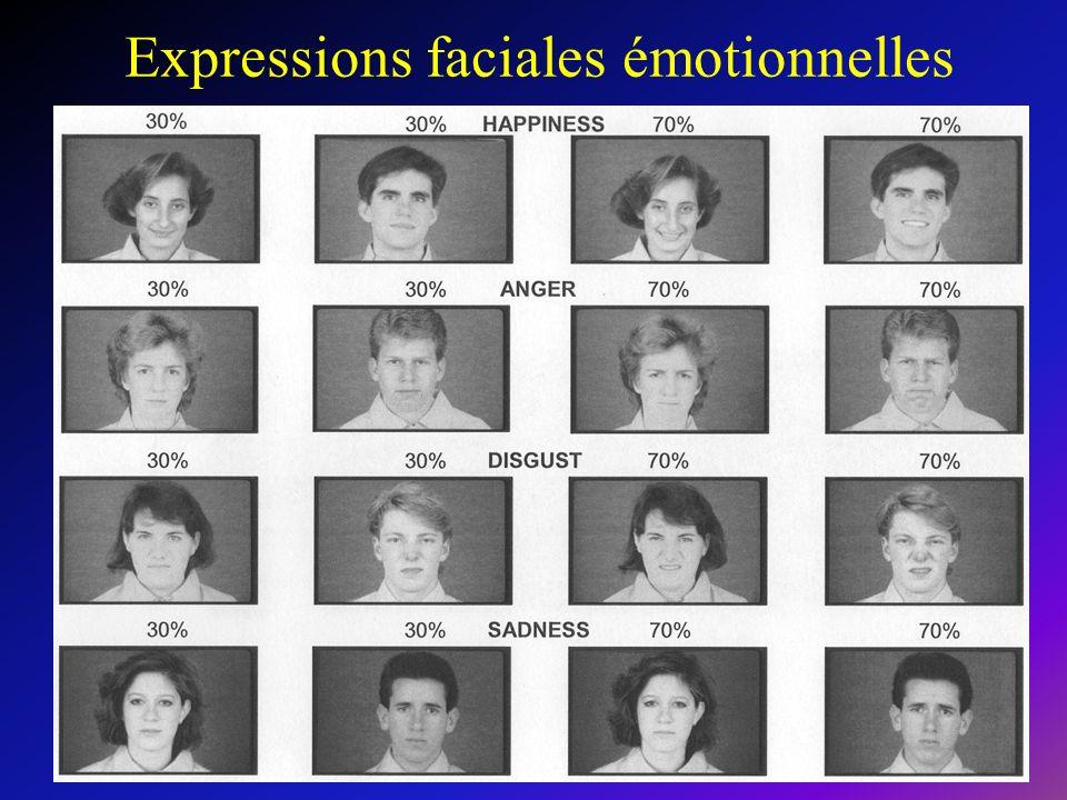 Expressions faciales émotionnelles