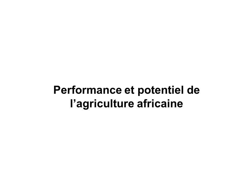 Performance et potentiel de l'agriculture africaine