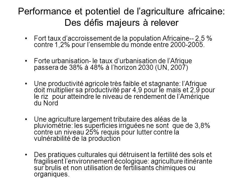 Performance et potentiel de l'agriculture africaine: Des défis majeurs à relever