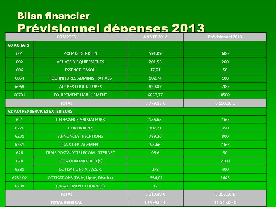 Bilan financier Prévisionnel dépenses 2013