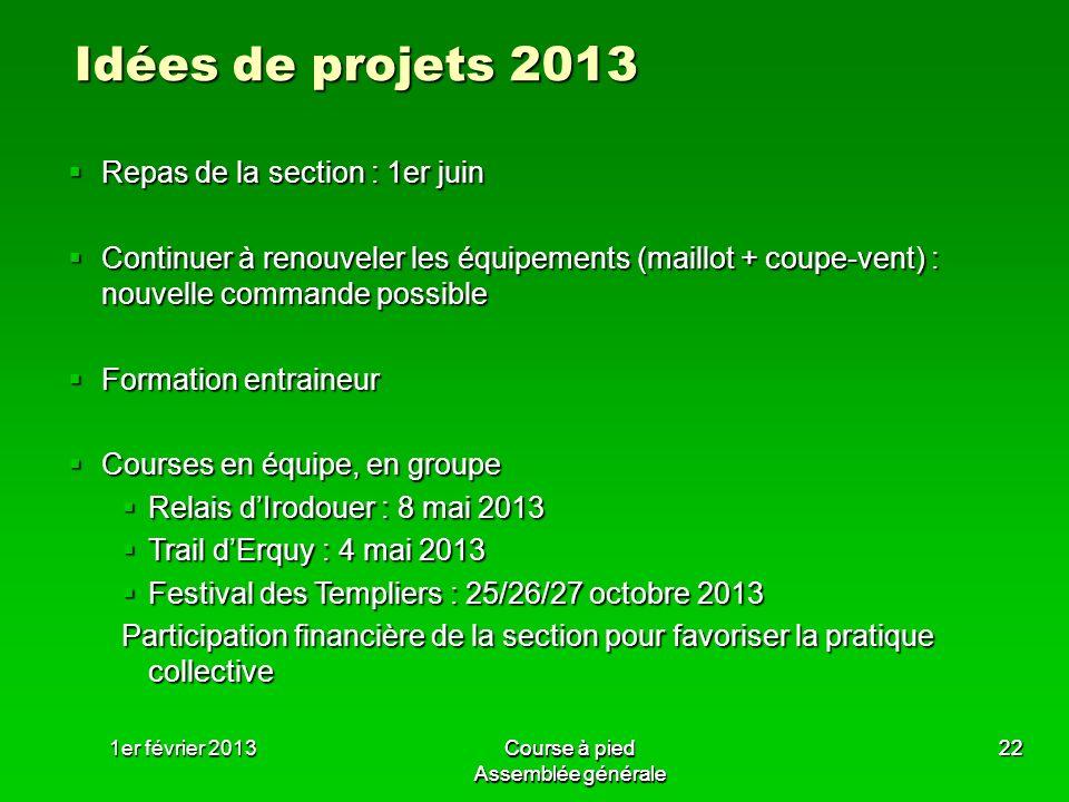 Idées de projets 2013 Repas de la section : 1er juin