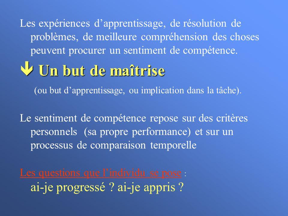 Les expériences d'apprentissage, de résolution de problèmes, de meilleure compréhension des choses peuvent procurer un sentiment de compétence.
