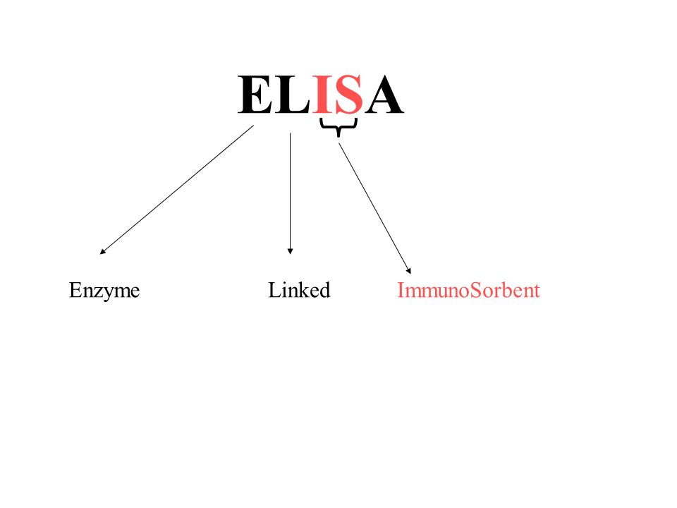 Enzyme Linked ELISA ImmunoSorbent
