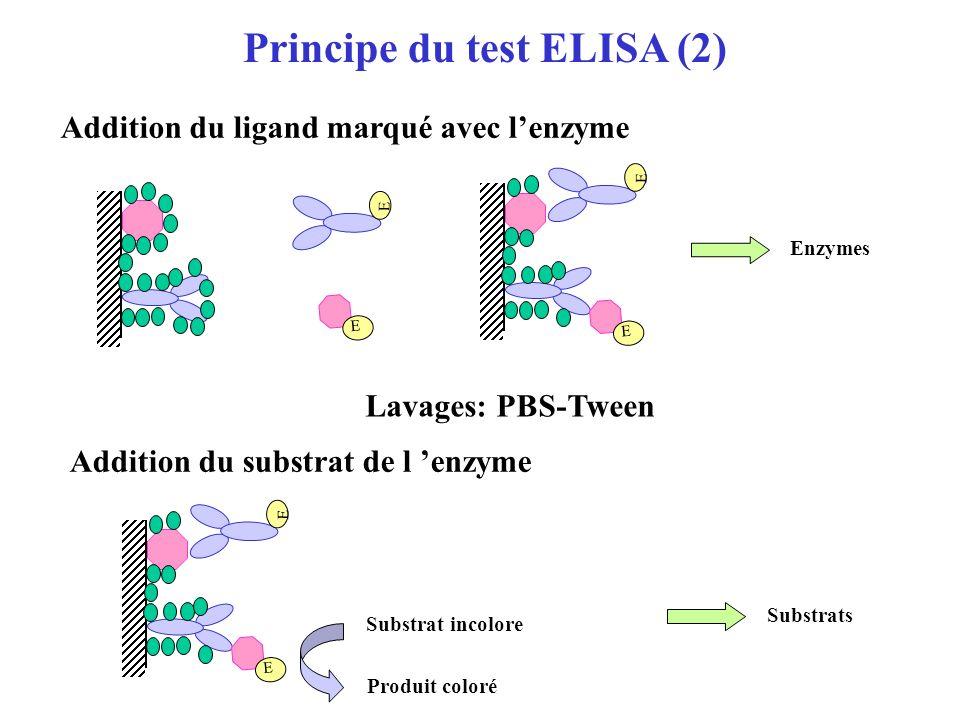 Principe du test ELISA (2)