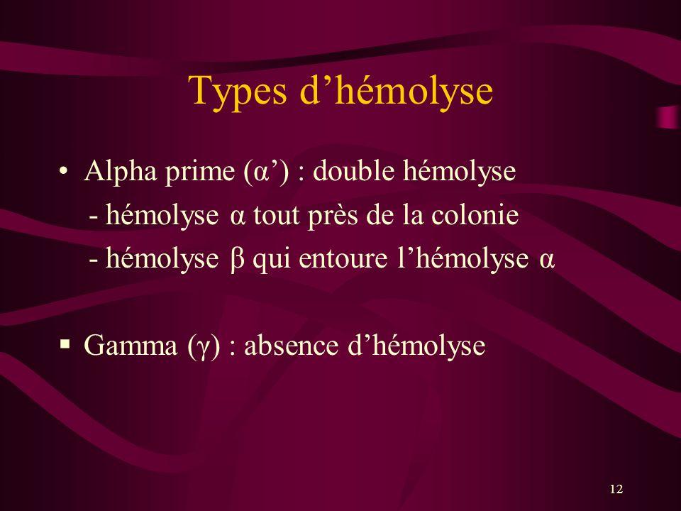 Types d'hémolyse Alpha prime (α') : double hémolyse