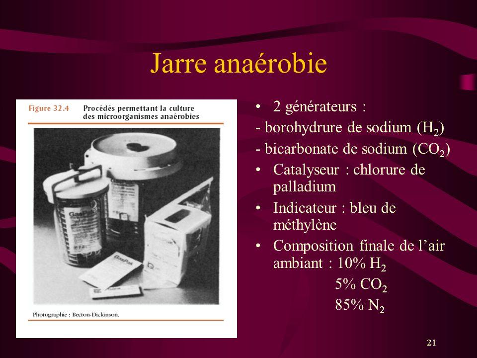 Jarre anaérobie 2 générateurs : - borohydrure de sodium (H2)