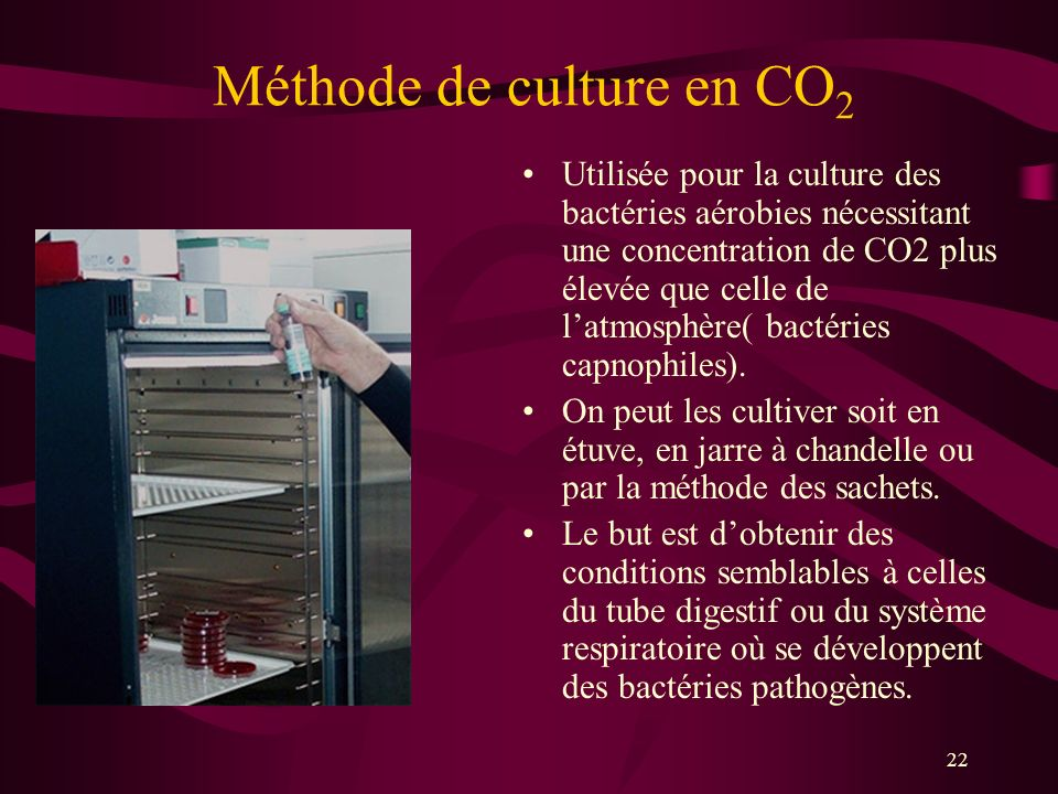 Méthode de culture en CO2