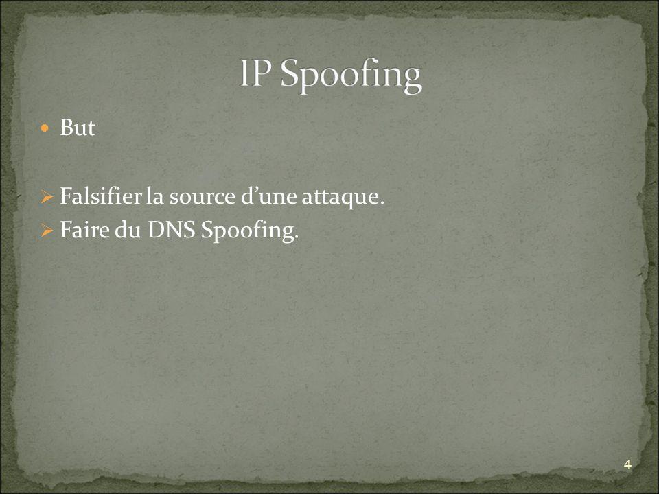 Falsifier la source d'une attaque. Faire du DNS Spoofing.