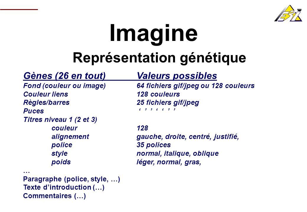 Représentation génétique