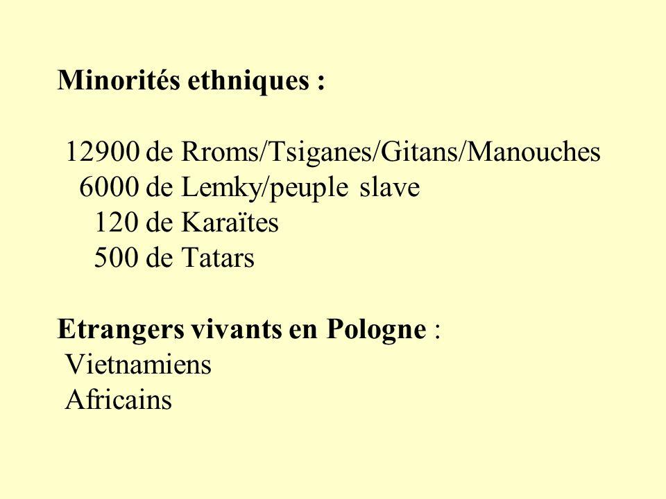 Minorités ethniques : 12900 de Rroms/Tsiganes/Gitans/Manouches 6000 de Lemky/peuple slave 120 de Karaïtes 500 de Tatars Etrangers vivants en Pologne : Vietnamiens Africains