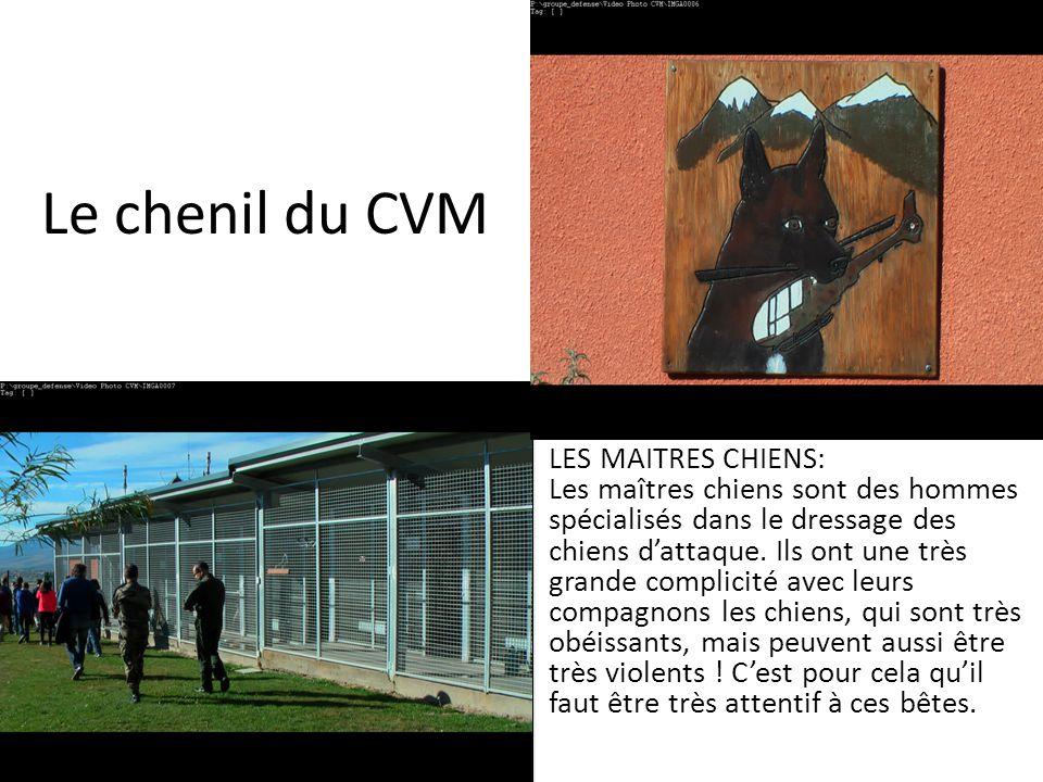 Le chenil du CVM