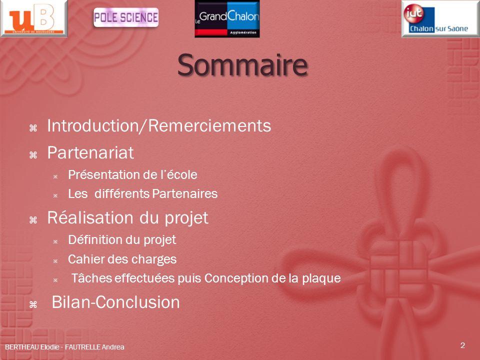 Sommaire Introduction/Remerciements Partenariat Réalisation du projet
