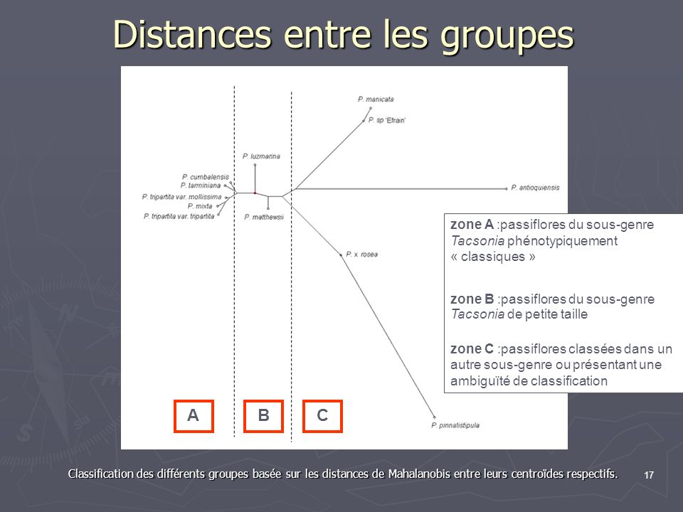 Distances entre les groupes