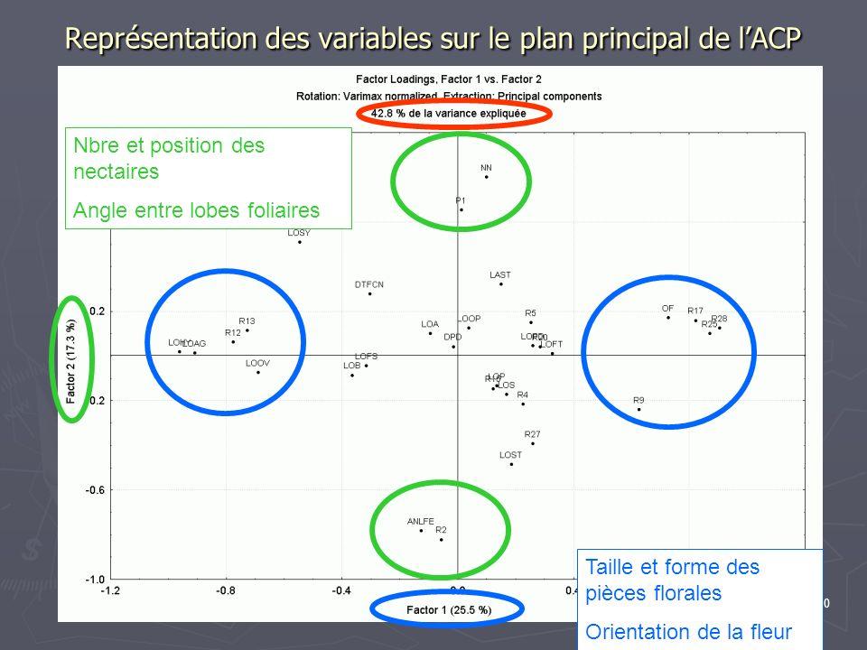 Représentation des variables sur le plan principal de l'ACP